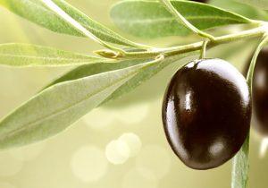 vitaminas-minerales-antioxidantes