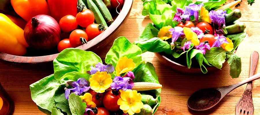232 alimentos-primavera