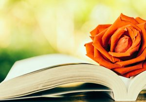 234 dia-del-libro-rosa