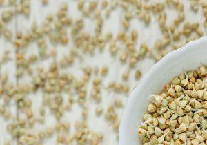alimentos-germinados-jmsanchez-blog