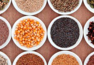 blog-semillas
