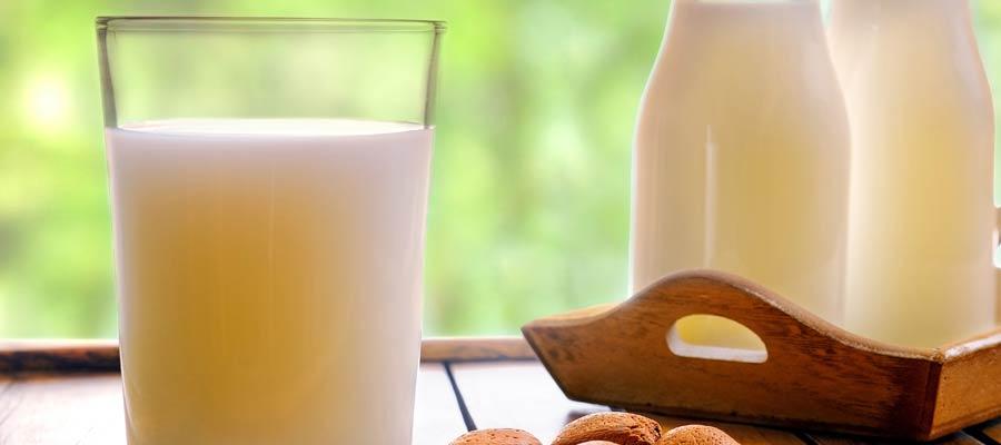 leche-vaca-vegetal